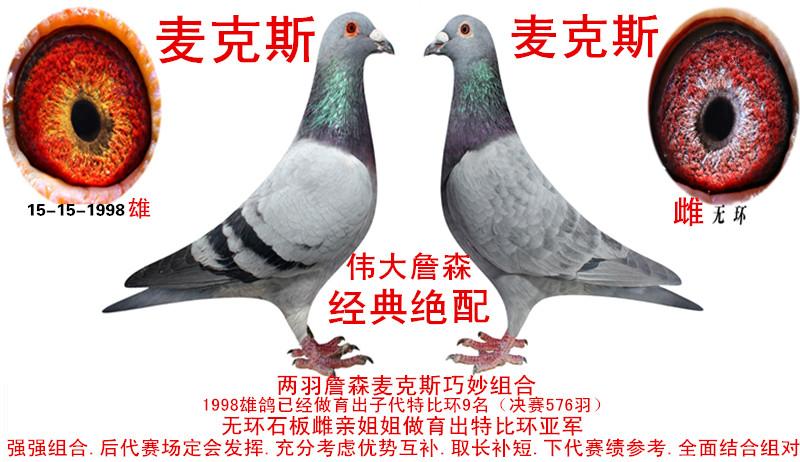 信鸽拍卖首页 拍卖专题 >> 查看拍卖商品  相关图片 目前尚无图片!