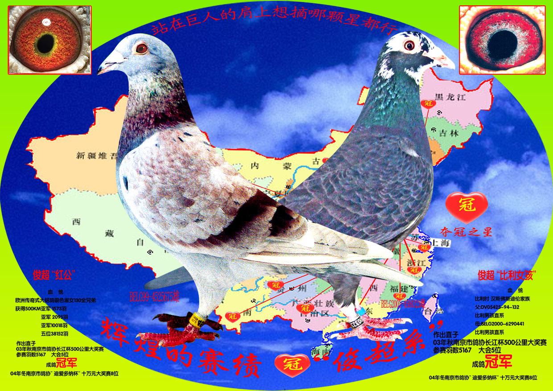 女孩放飞鸽子卡通图片