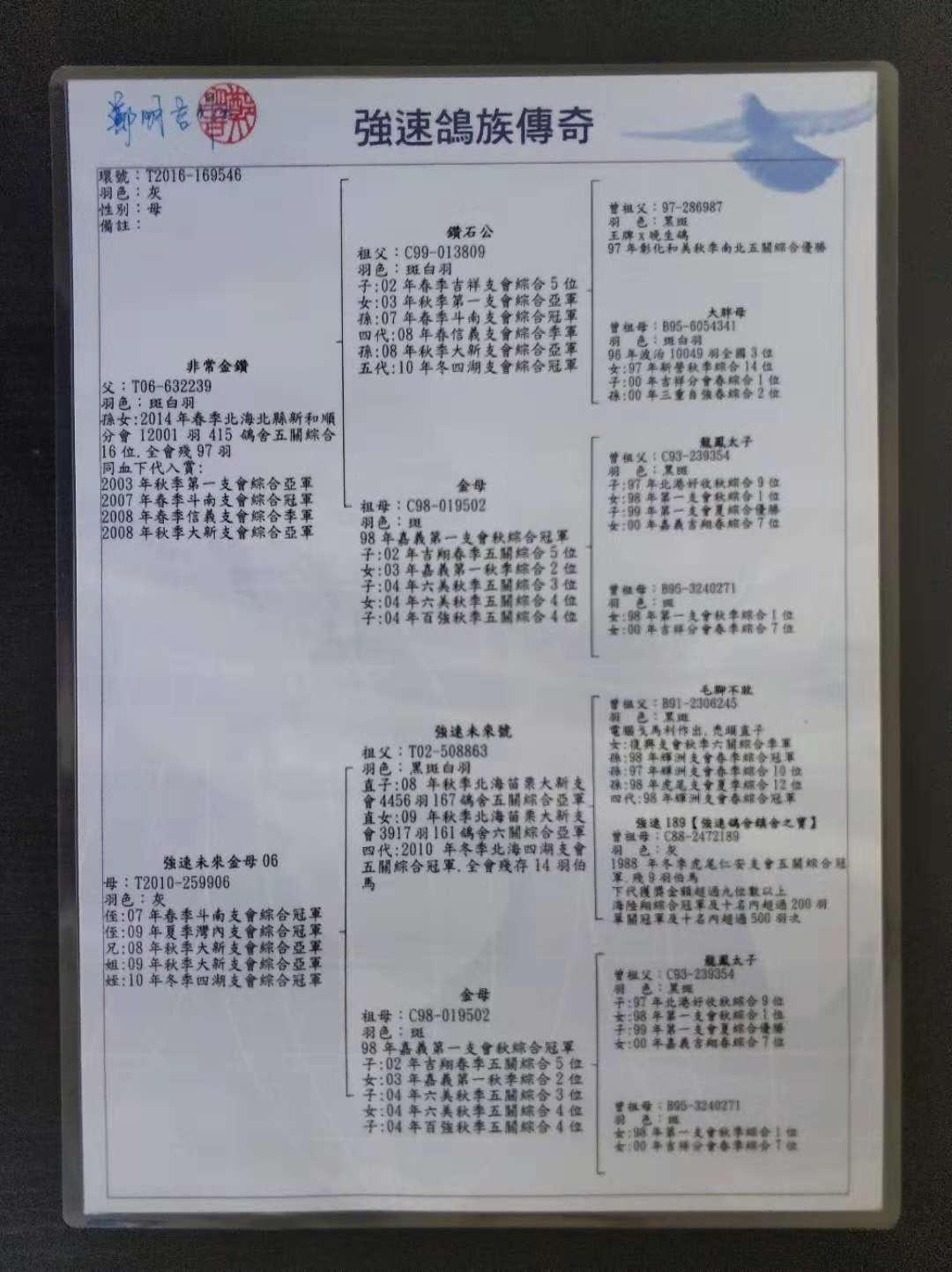 四代:2010年春赛内蒙古包头市500公里亚军 四代:2010年秋季北海亿全支