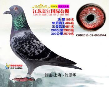 江苏长江决赛105名