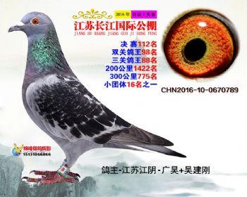 江苏长江决赛112名