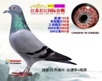 江苏长江决赛122名