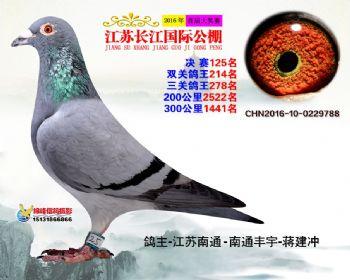 江苏长江决赛125名