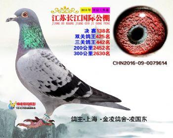 江苏长江决赛138名