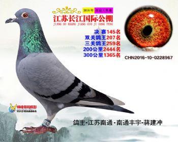 江苏长江决赛145名