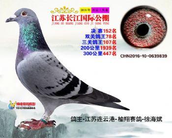 江苏长江决赛152名
