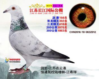 江苏长江决赛156名