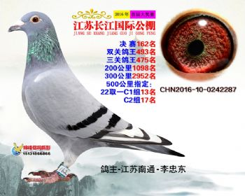 江苏长江决赛162名