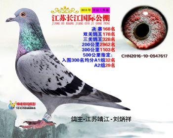 江苏长江决赛168名