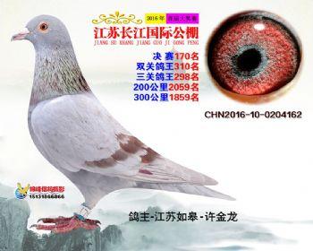 江苏长江决赛170名