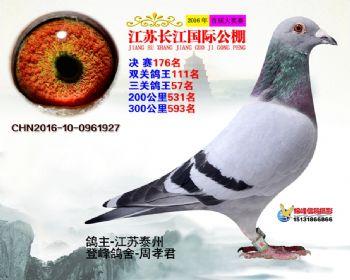 江苏长江决赛176名