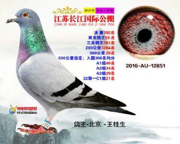江苏长江决赛192名