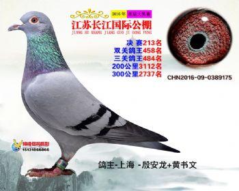 江苏长江决赛213名