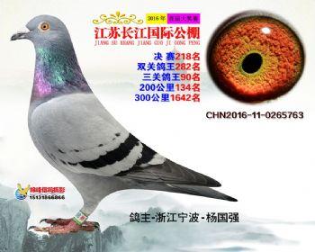 江苏长江决赛218名