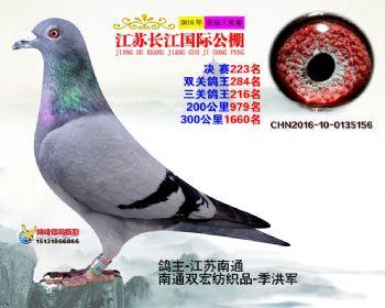 江苏长江决赛223名