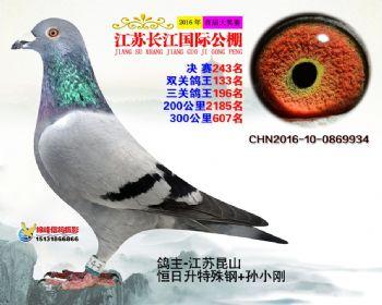 江苏长江决赛243名