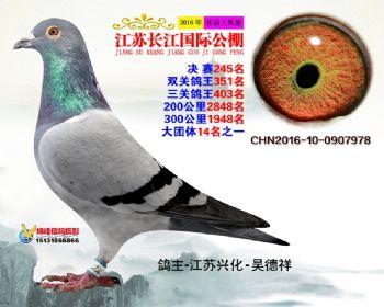 江苏长江决赛245名