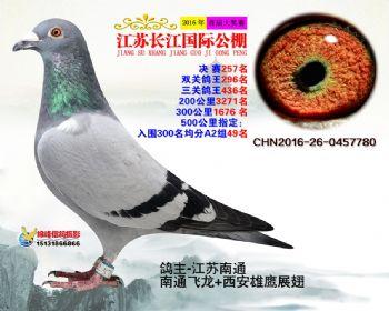 江苏长江决赛257名