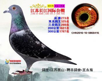 江苏长江决赛273名