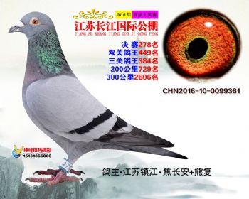 江苏长江决赛278名
