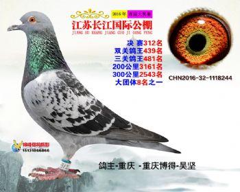 江苏长江决赛312名