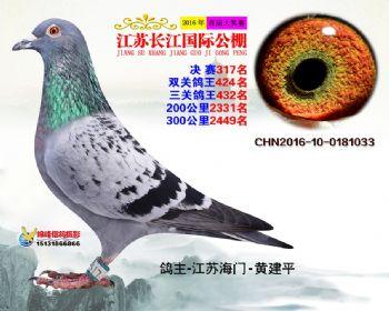 江苏长江决赛317名