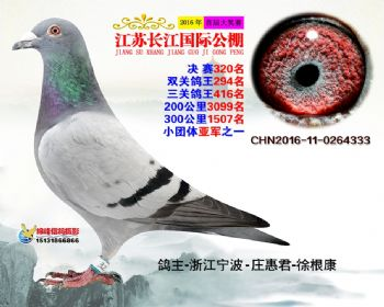 江苏长江决赛320名
