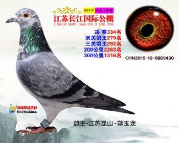 江苏长江决赛334名