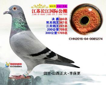 江苏长江决赛340名