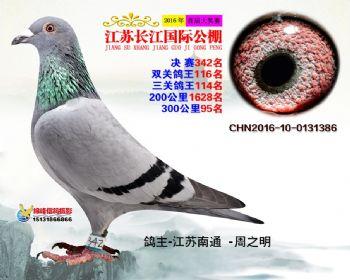 江苏长江决赛342名