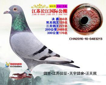 江苏长江决赛350名