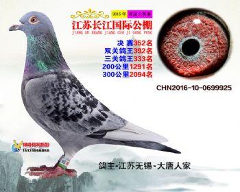 江苏长江决赛352名