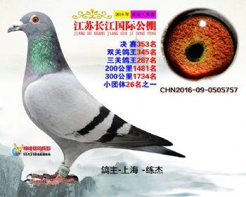 江苏长江决赛353名