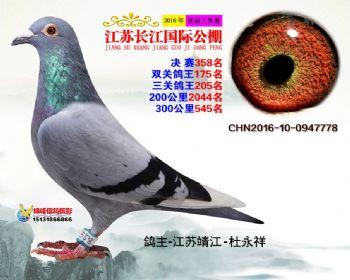 江苏长江决赛358名