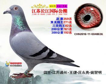 江苏长江决赛359名