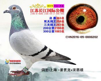 江苏长江决赛363名