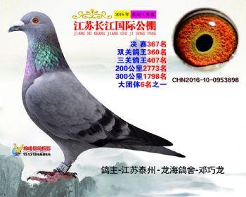 江苏长江决赛367名