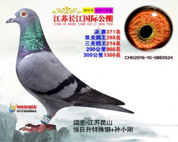 江苏长江决赛371名