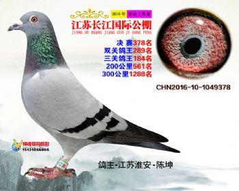 江苏长江决赛378名