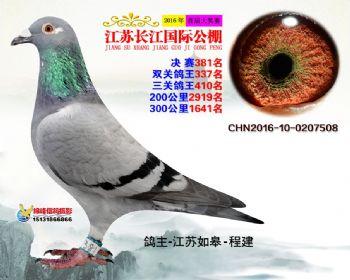 江苏长江决赛381名