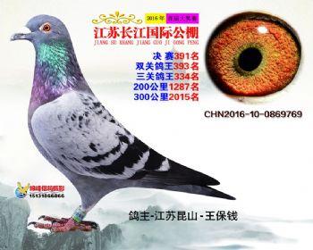 江苏长江决赛391名