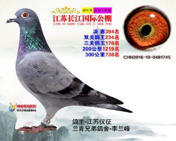 江苏长江决赛394名