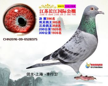 江苏长江决赛396名