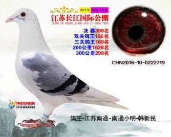 江苏长江决赛398名