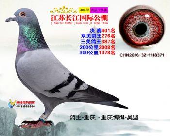 江苏长江决赛401名