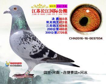 江苏长江决赛403名