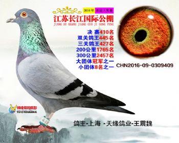 江苏长江决赛410名