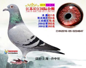 江苏长江决赛411名