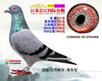 江苏长江决赛417名