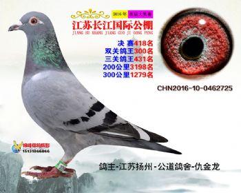 江苏长江决赛418名